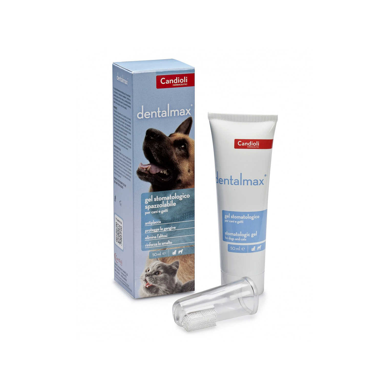 Candioli - Dentalmax - Gel Stomatologico