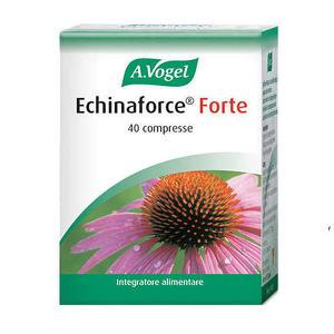 A. Vogel - Echinaforce - Forte