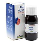 Boiron - Ribes Nigrum - Tintura Madre